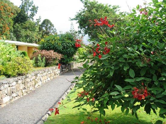 Quinta da Casa Branca: Le jardin