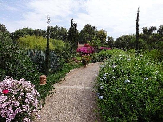 Riad Dar Maktoub : Garden