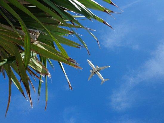 Senaga-jima Island: 飛行機