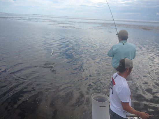 Sight Fish Charters: My brother on a fly rod