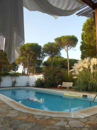 Casa la Felicidad: view from terrace