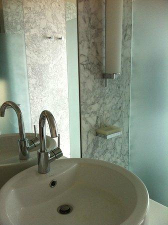 The Dupont Circle: Modern Sink