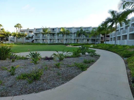 Coronado Island Marriott Resort & Spa: view from bay