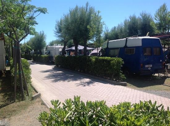Camping Tripesce : view