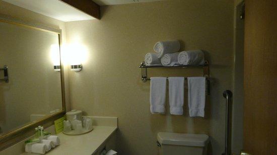 Holiday Inn Express Hotel & Suites Allentown - Dorney Park Area: Nice  clean bathroom