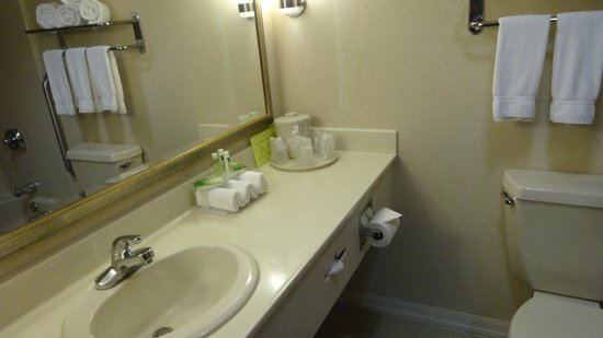 Holiday Inn Express Hotel & Suites Allentown - Dorney Park Area: Spacious counter