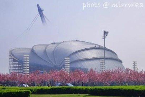 Dalian Shell Museum: 大連貝殻博物館大连贝壳博物馆