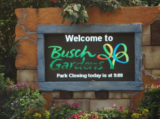 Busch Gardens Tampa: Horarios
