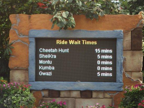 Busch Gardens Tampa: Tiempos de espera