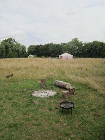 Ivy Grange Farm Yurt Holidays: view of the site