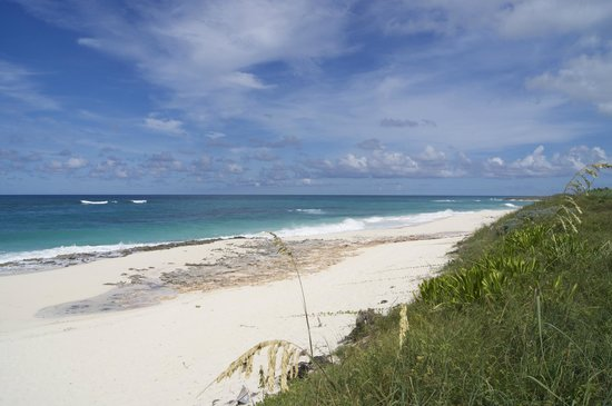 Great Guana Cay: Long stretch of beach