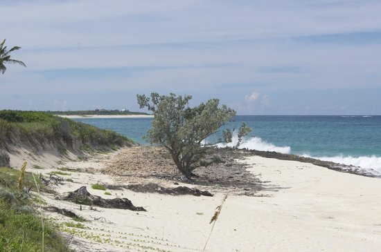 Great Guana Cay: Looking into Baker's Bay