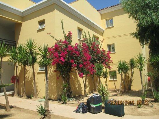 Malama Beach Holiday Village: Flowers everywhere