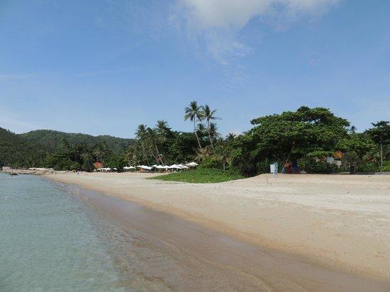 First Bungalow Beach Resort: 4
