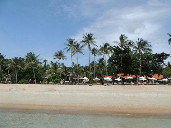 First Bungalow Beach Resort: 7
