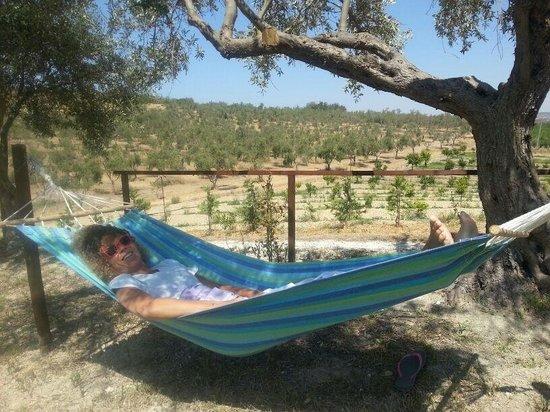 Agriturismo Re Carrubo: Lucina testa l'amaca