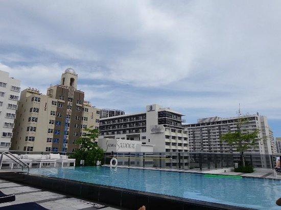 Gale South Beach: piscina fantastica