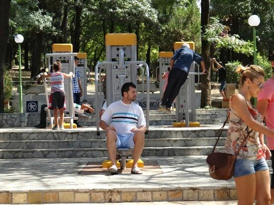Grand Park (Parku i Madh): People using the gym machines in the park