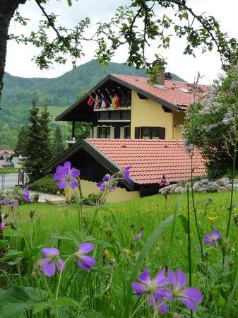 Gastehaus-Pension Zeranka : View from Gästehaus_Bed&Breakfast Zeranka in Ruhpolding