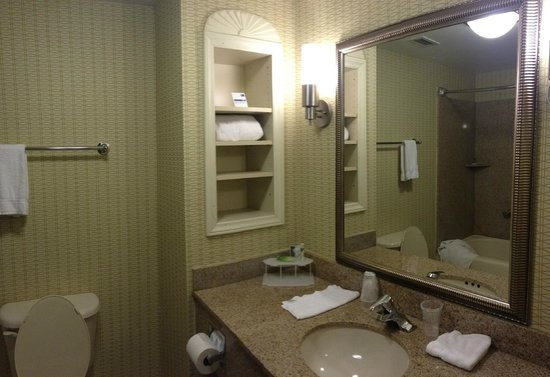 Holiday Inn Express Hotel & Suites Christiansburg: sink area