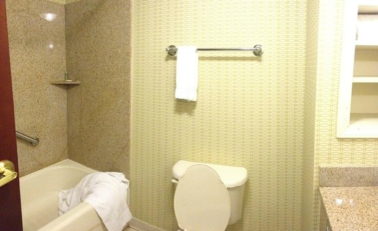Holiday Inn Express Hotel & Suites Christiansburg : tub & toilet
