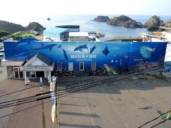 越前松島水族館, とても楽しい水族館でした。