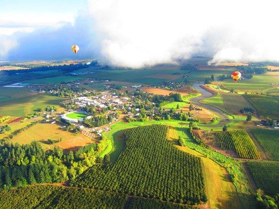 Vista Balloon Adventures: Amazing!!