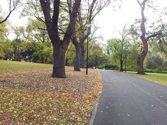 Flagstaff Gardens: Path