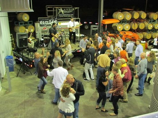 Andis Wines : 1st annual redneck BBQ bash was a blast!