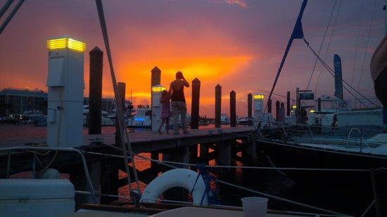 Key West Sailing Adventure: The marina