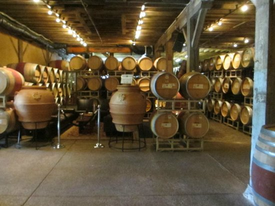 Del Dotto Vineyards & Winery: beginning of tour