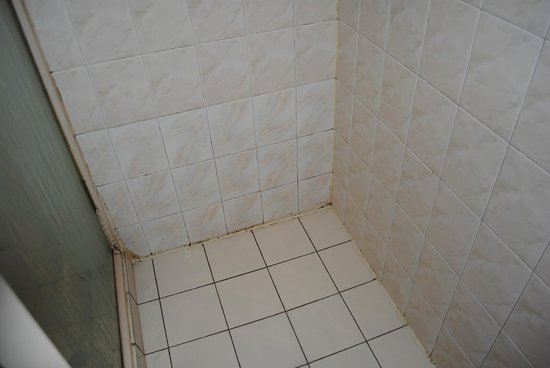 Southern Comfort Motel: Bathroom shower..desperately needs an update!