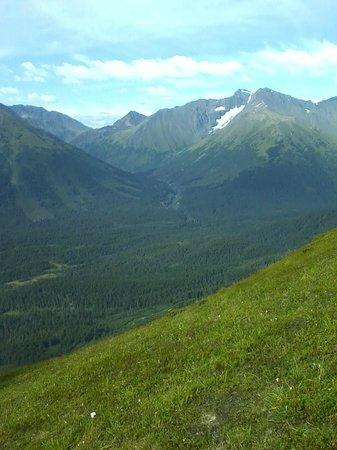 907 Tours: Anchorage - Day Tours: Mt. Alyeska on 907Tour