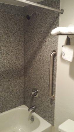 Econo Lodge Near Bluefield College: new Bathroom