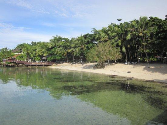 Pacific Cebu Resort : Beach