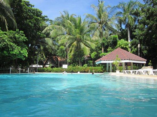 Pacific Cebu Resort : Pool