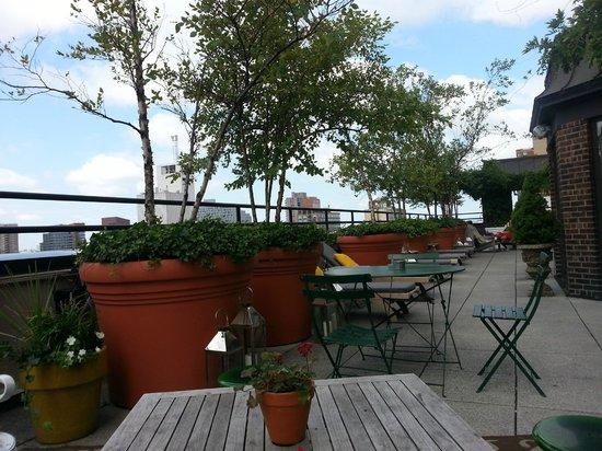 hudson hotel new york terraza piso