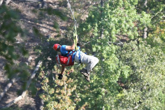 Zip Lines at Ouachita Bend: Zipping through the trees at Ouachita Bend