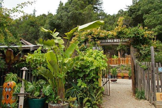 Big Sur Bakery & Restaurant: Neat arts & handicraft gallery on site