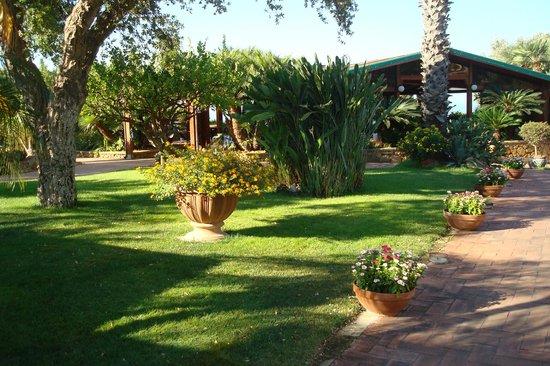 Colleverde Park Hotel: Jardín del hotel