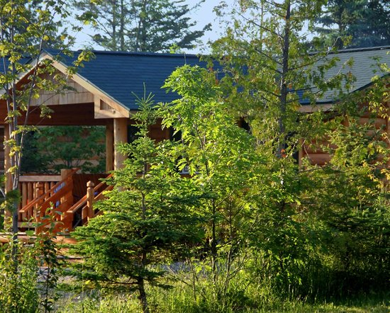 camping cabin at mackinaw mill creek camping picture of
