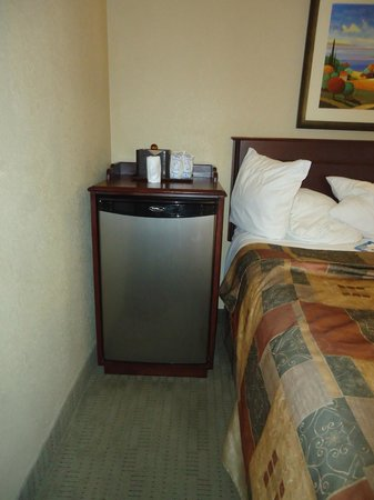 Best Western Plus Pembina Inn & Suites : Bigger than average hotel fridge