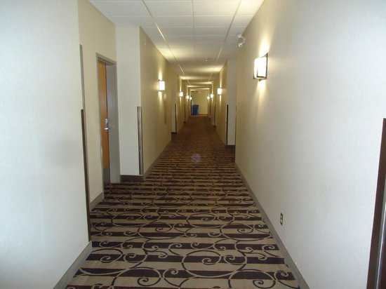 Best Western Plus Pembina Inn & Suites : First floor hallway