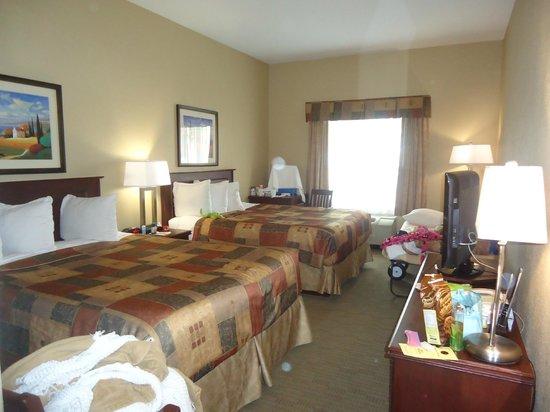 BEST WESTERN PLUS Pembina Inn & Suites: Hotel Room with high ceiling