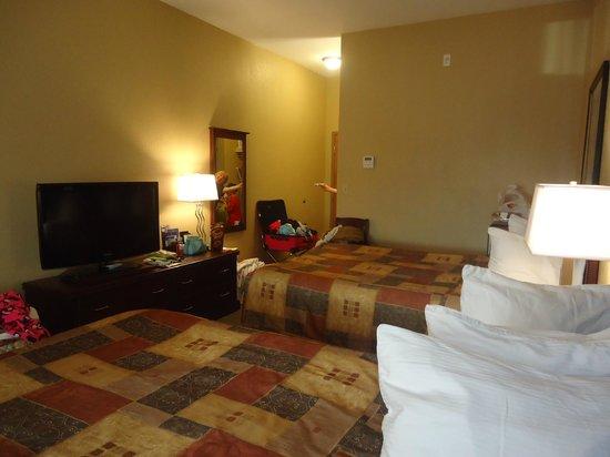 BEST WESTERN PLUS Pembina Inn & Suites: Hotel room