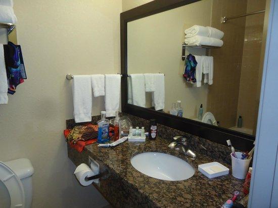 BEST WESTERN PLUS Pembina Inn & Suites: bathroom