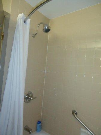 BEST WESTERN PLUS Pembina Inn & Suites: Great shower head