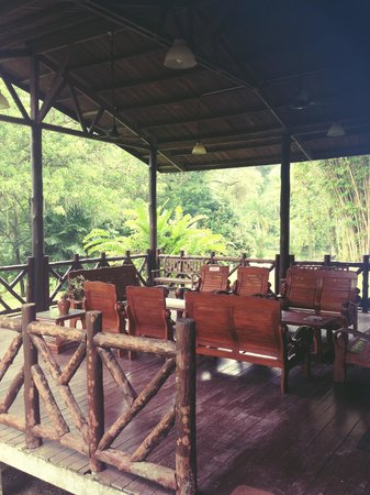 Sepilok B&B : Seating area