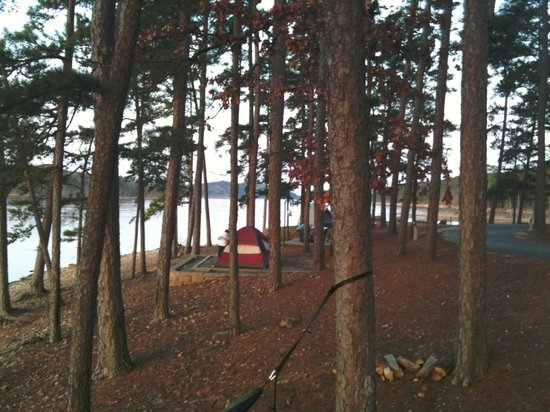 Lake Ouachita State Park Campground : View from a tent pad