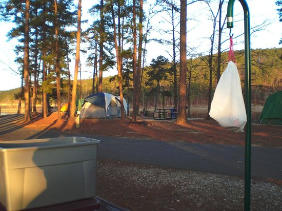 Lake Ouachita State Park Campground : central walkway